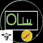 Olivenöl aromatisiert